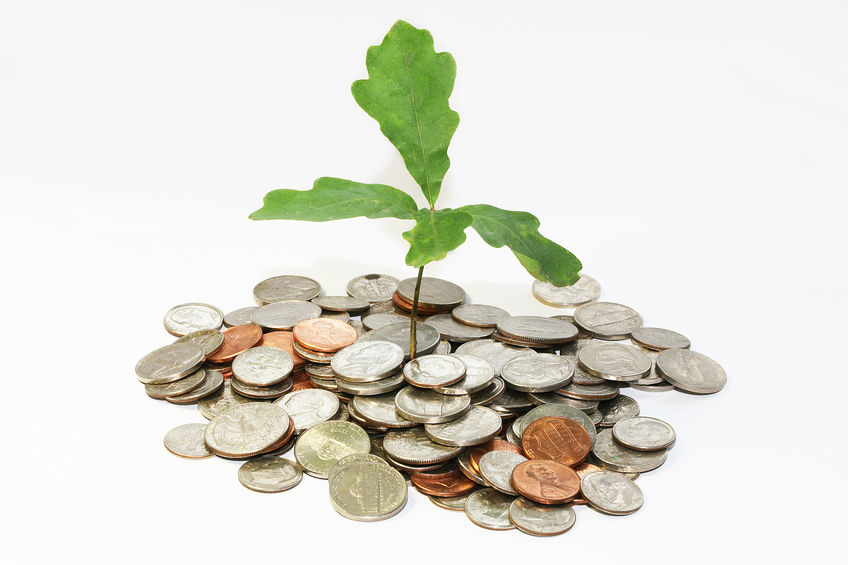coins green plant financial wellness financial advice industry how do we get there