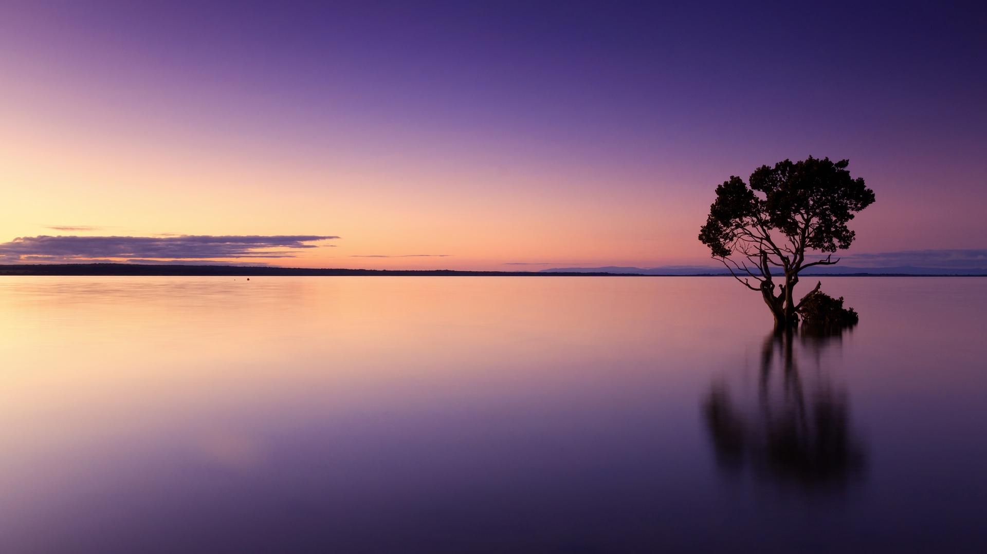 purple sunset seascape domestic violence mental health of female victims