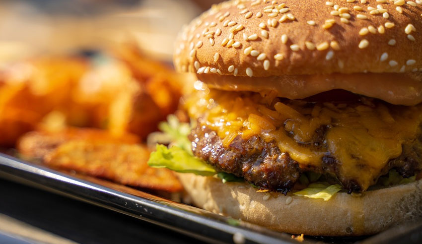 Eating junk food can affect long-term memory